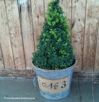 Galvanised Planter marked No.3 - Reduced Ex Display