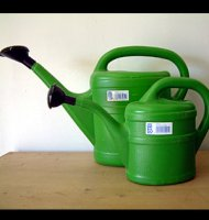 Plastic Watering Can - 2 litre