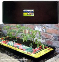 Growbag Watering Tray - 100cm x 39cm
