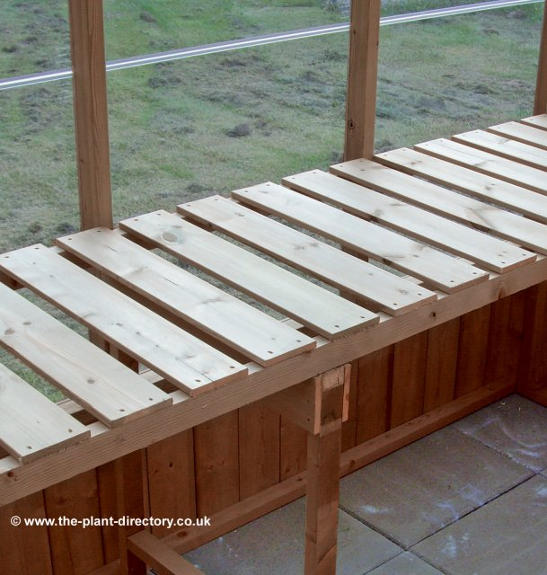 Extra Large Timber Greenhouse with Safety Glass 25'2 x 13'1 - Click Image to Close