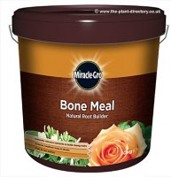 Miracle Gro Bone Meal - 10kg Tub