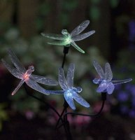Dragonfly Solar Lights - pack of 4