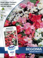 Begonia Special Mixed F1