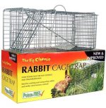Rabbit Damage Control Products