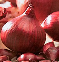 Onion Sets - Red Baron 250g