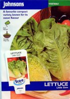 Lettuce Seed - Little Gem