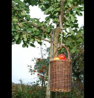 Fruit Pickers Basket - Haanderik