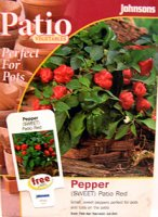Pepper - Sweet Pepper Patio Red