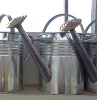 Galvanised Watering Can - 2 gallon
