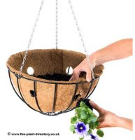 Side Planting Hanging Basket Liner 35cm - Natural