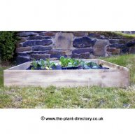 Square Raised Bed - 100cm x 100cm x 15cm