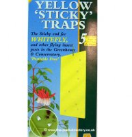 Yellow Sticky Whitefly Traps