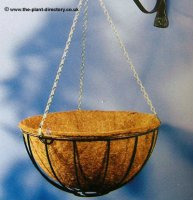Traditional Hanging Basket complete with Coir Liner - 35cm