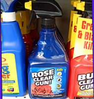 Rose Clear Ready-to-Use Gun