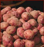 Maincrop Seed Potatoes - Desiree - 1kg