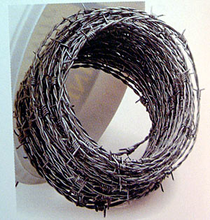 Barbed Wire - 15 metres