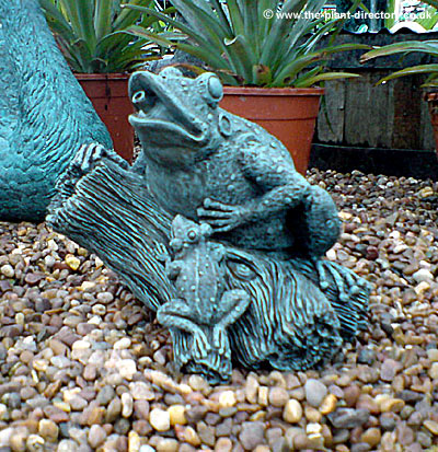 Frog and Froglet Fountain - Click Image to Close