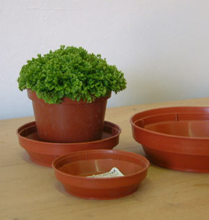 Flower Pot Saucers - for 5 to 6 inch Pots 13.5cm - pack of 5