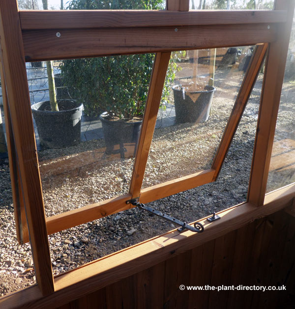 Victorian Timber Greenhouse with Safety Glass 18'6 x 8'3 - Click Image to Close